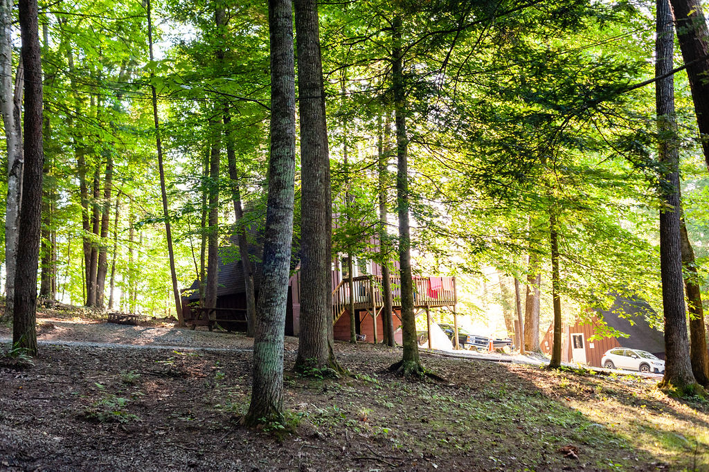MSH_chalet_at_the_lake_090